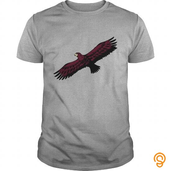 Efficient Eagle bird flying anmut birds of prey TShirts201733100447 Tee Shirts For Sale