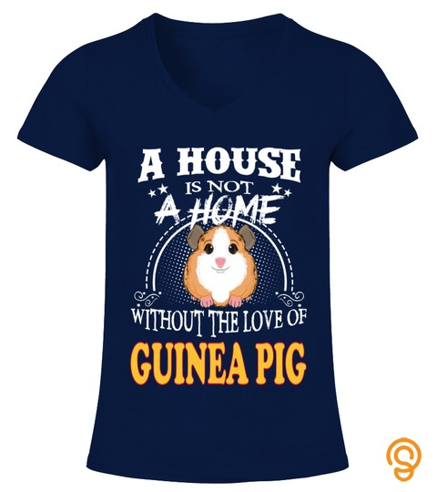A Home Without Love Guinea Pig