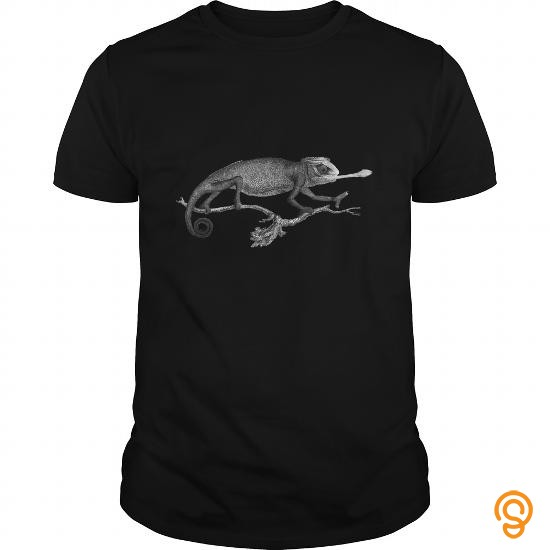 everyday-chameleon-vintage-illustration-tee-shirts-for-adults