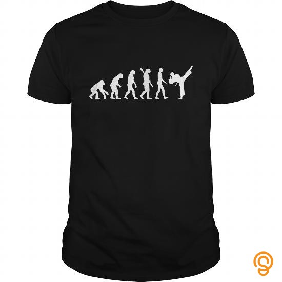 colorful-evolution-karate-tee-shirts-sayings-men