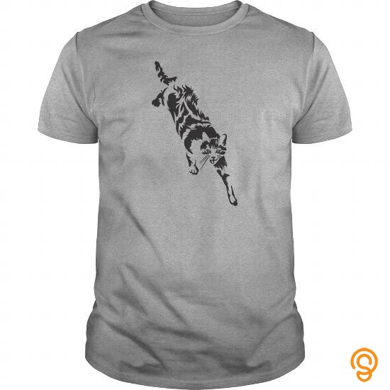 name-brand-cats-t-shirts-mens-premium-t-shirt-tee-shirts-sayings-women