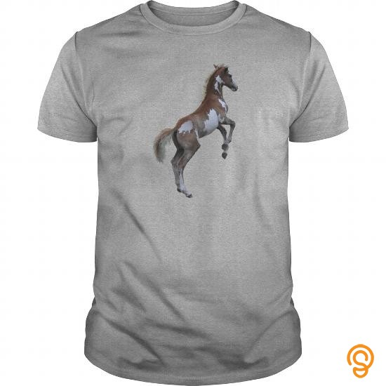 garment-rearing-pinto-pony-horse-kids-shirts-shirt-horse-shirt-tee-shirts-sayings