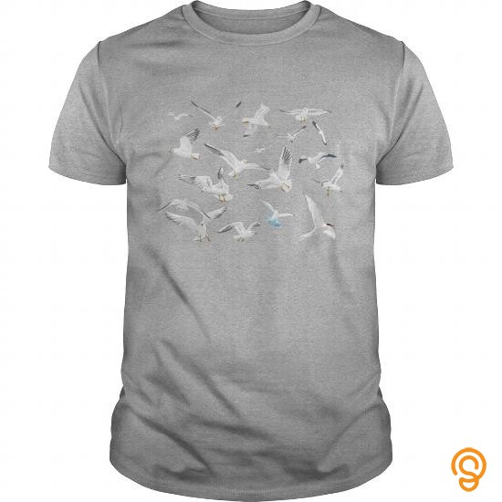 model-birds-kids-shirts201727100440-tee-shirts-review