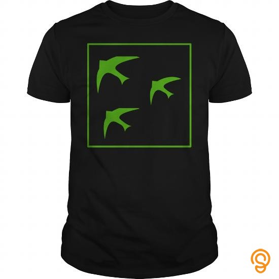 modern-green-birds-icon201701100401-tee-shirts-saying-ideas