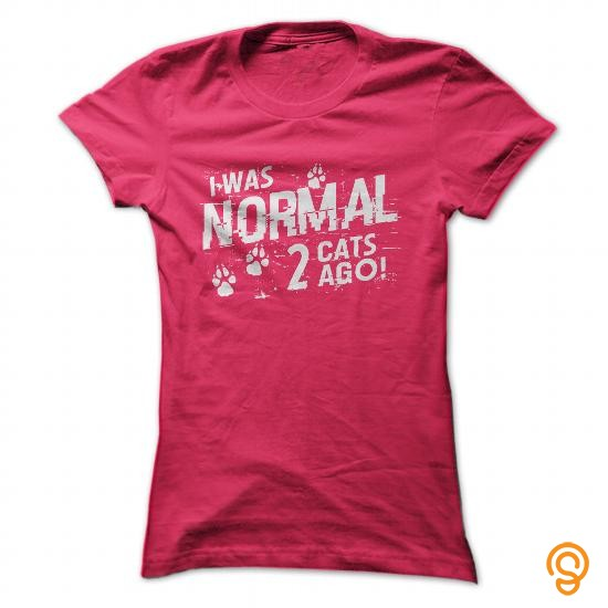 plus-size-i-was-normal-2-cats-ago-t-shirts-clothes